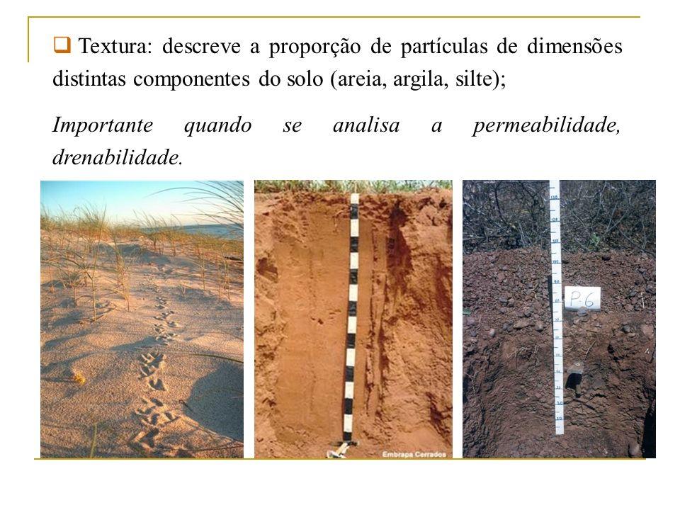 Textura: descreve a proporção de partículas de dimensões distintas componentes do solo (areia, argila, silte);