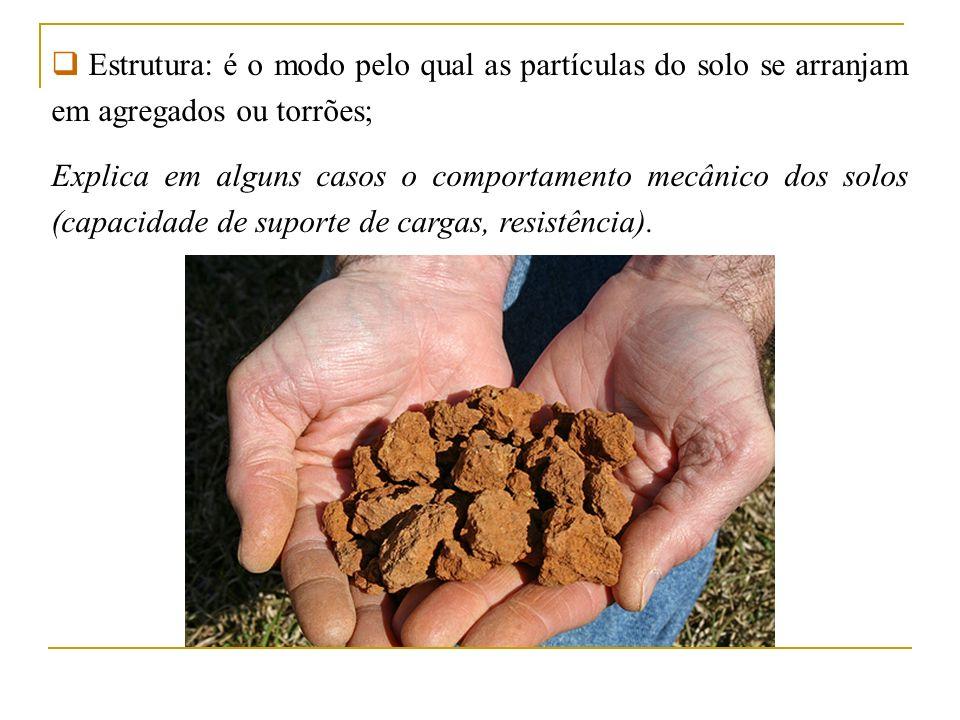 Estrutura: é o modo pelo qual as partículas do solo se arranjam em agregados ou torrões;