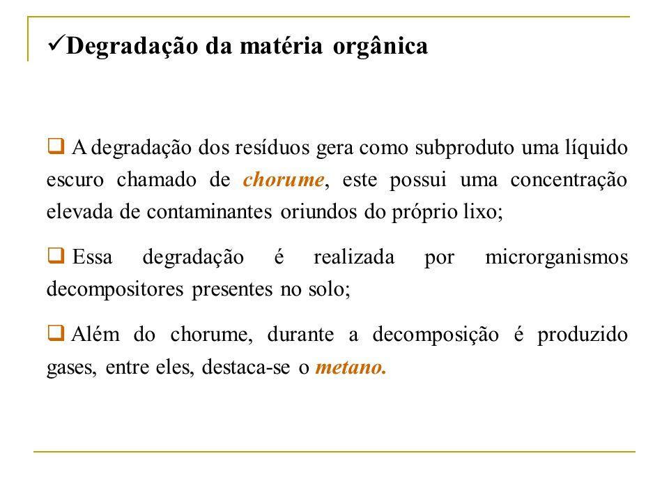 Degradação da matéria orgânica