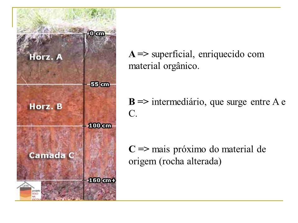 A => superficial, enriquecido com material orgânico.