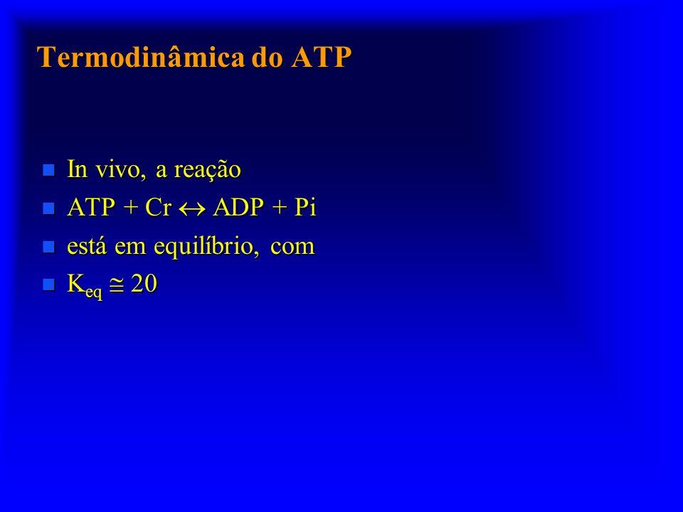 Termodinâmica do ATP In vivo, a reação ATP + Cr  ADP + Pi