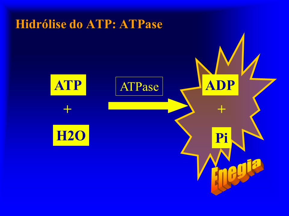 Hidrólise do ATP: ATPase