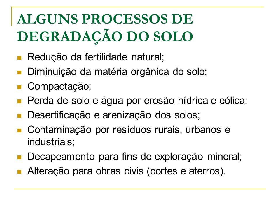 ALGUNS PROCESSOS DE DEGRADAÇÃO DO SOLO