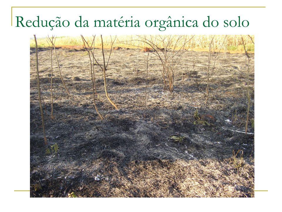 Redução da matéria orgânica do solo
