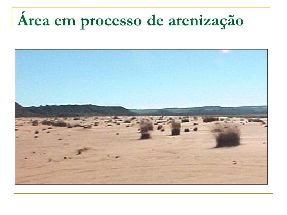 Área em processo de arenização