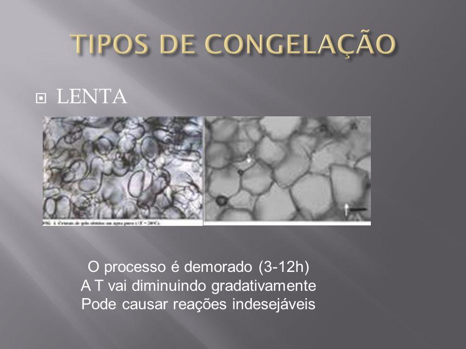 TIPOS DE CONGELAÇÃO LENTA O processo é demorado (3-12h)