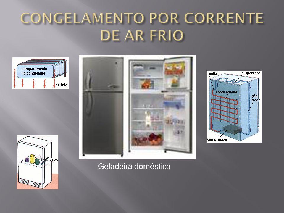 CONGELAMENTO POR CORRENTE DE AR FRIO