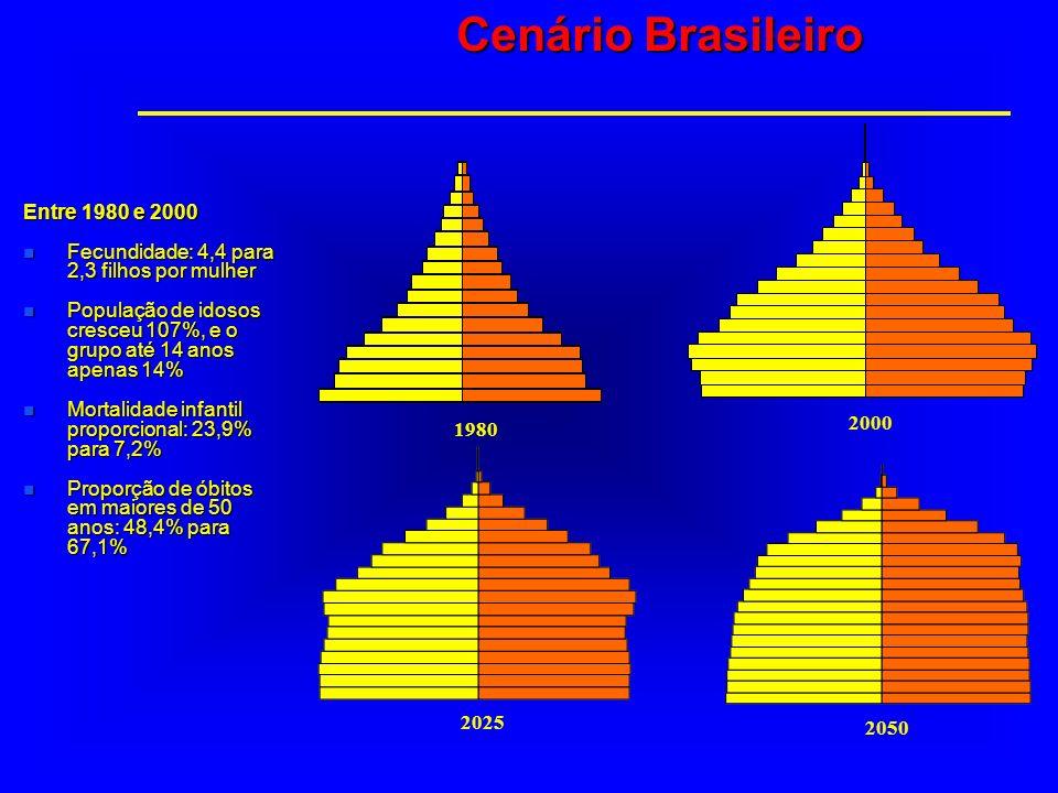 Cenário Brasileiro Entre 1980 e 2000