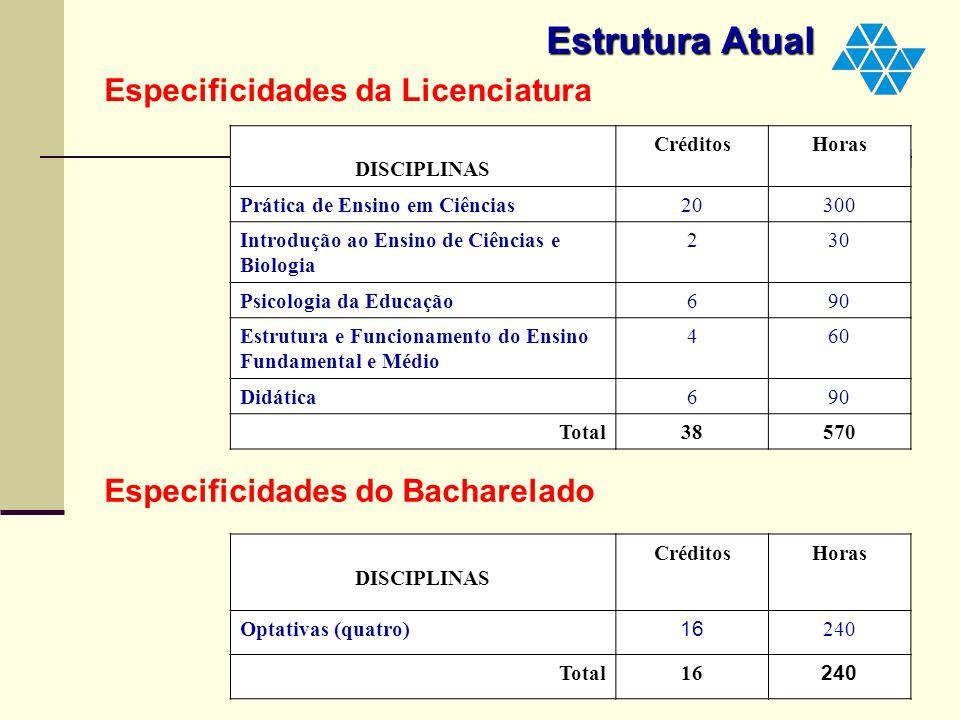 Estrutura Atual Especificidades da Licenciatura