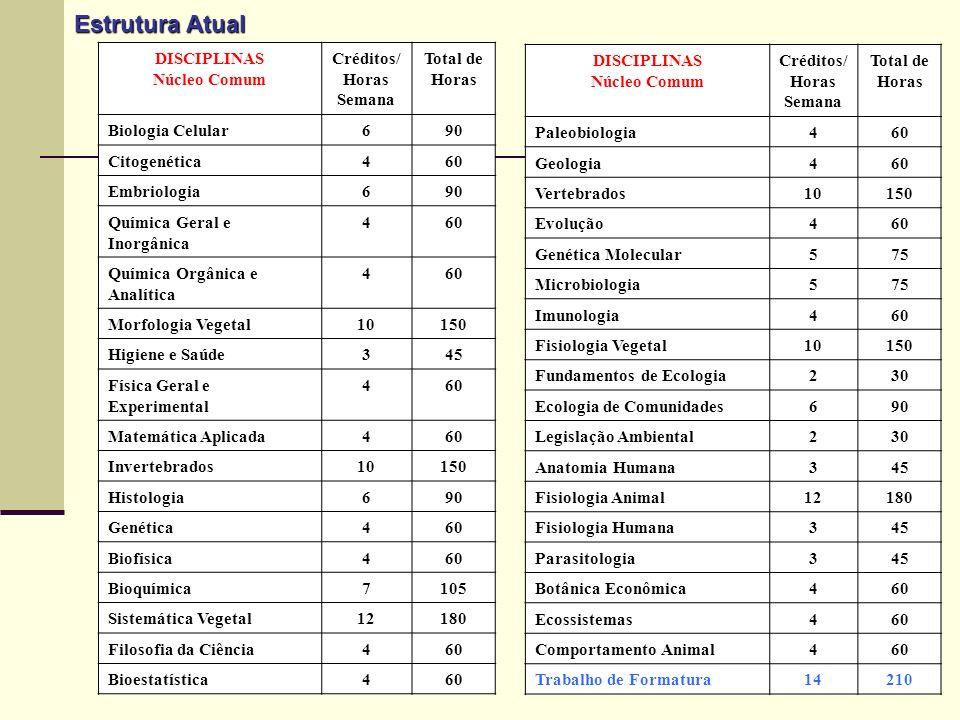 Estrutura Atual DISCIPLINAS Núcleo Comum Créditos/ Horas Semana