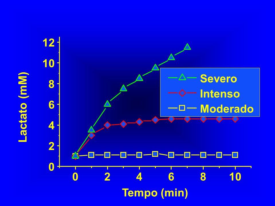 2 4 6 8 10 12 Severo Intenso Moderado Lactato (mM) Tempo (min)