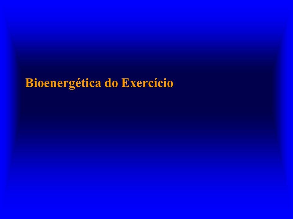 Bioenergética do Exercício