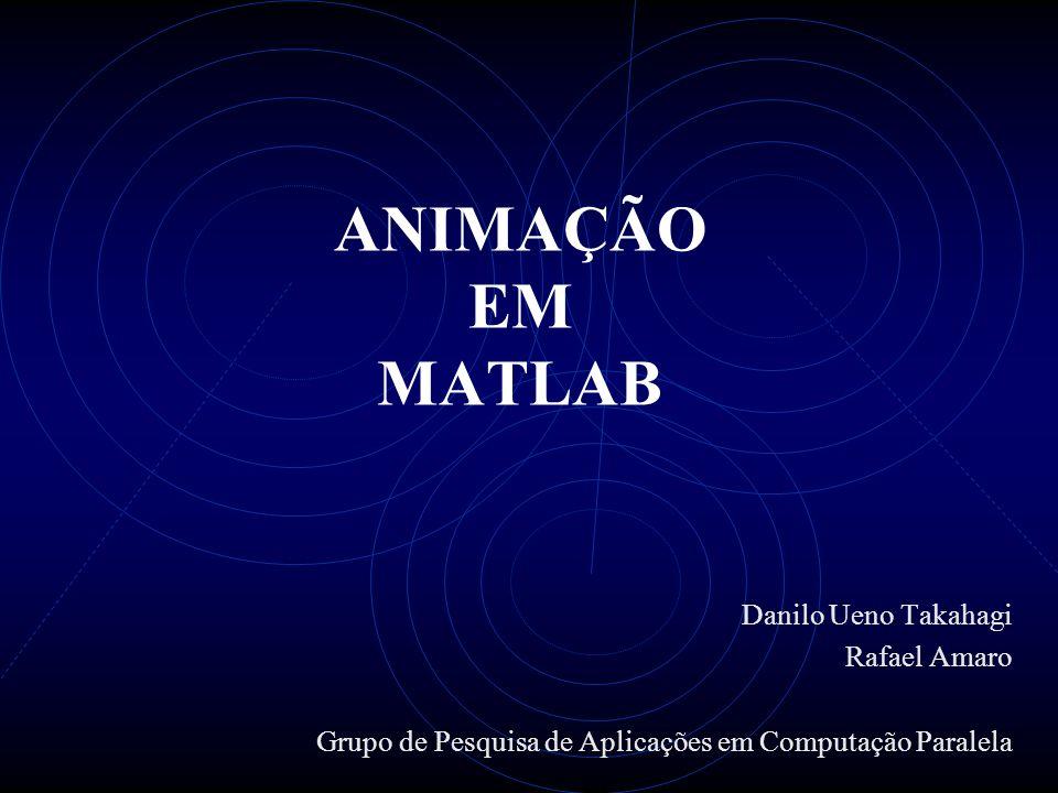 ANIMAÇÃO EM MATLAB Danilo Ueno Takahagi Rafael Amaro