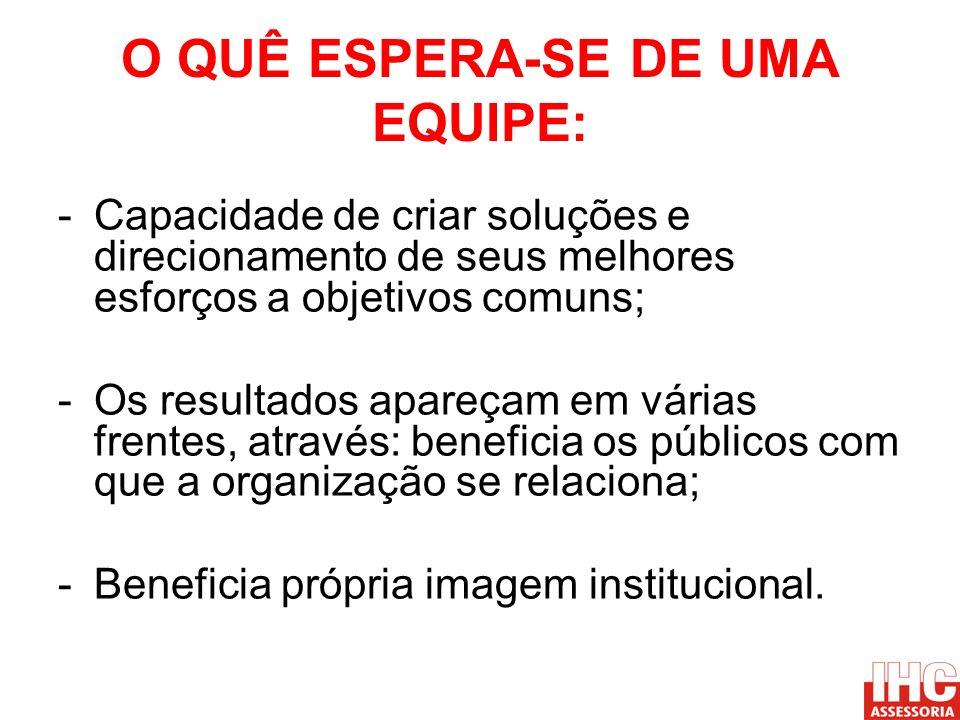 O QUÊ ESPERA-SE DE UMA EQUIPE: