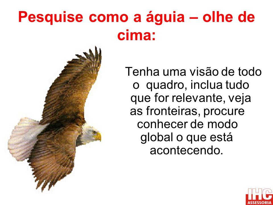 Pesquise como a águia – olhe de cima: