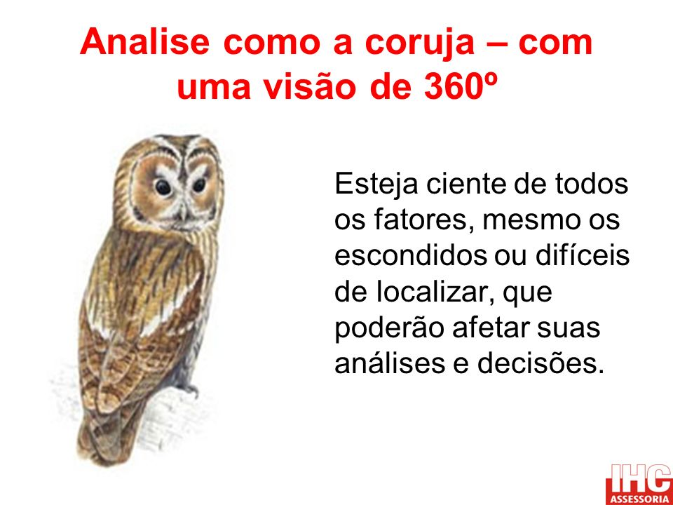 Analise como a coruja – com uma visão de 360º