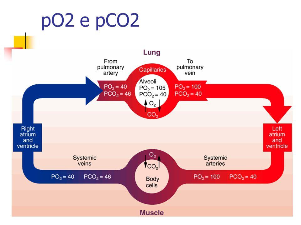 pO2 e pCO2