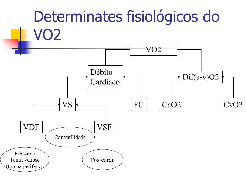 Determinates fisiológicos do VO2