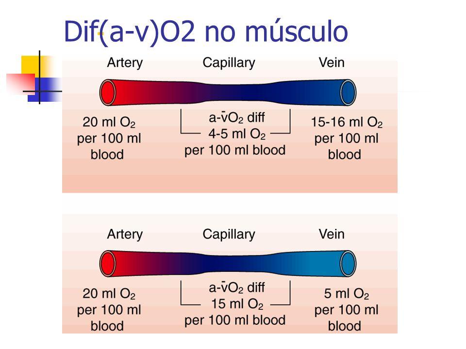 Dif(a-v)O2 no músculo -