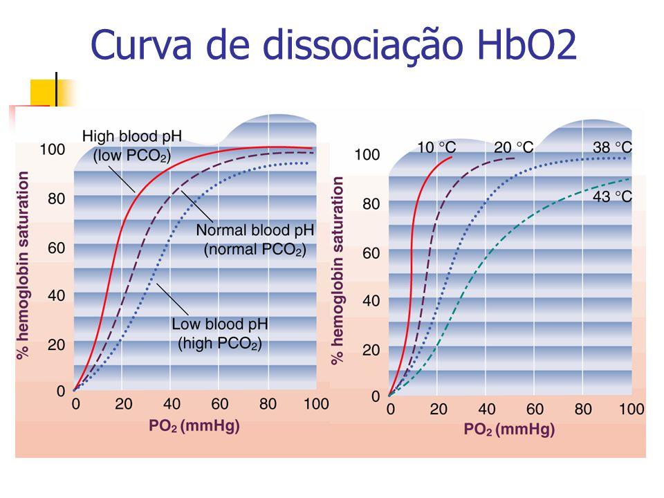 Curva de dissociação HbO2