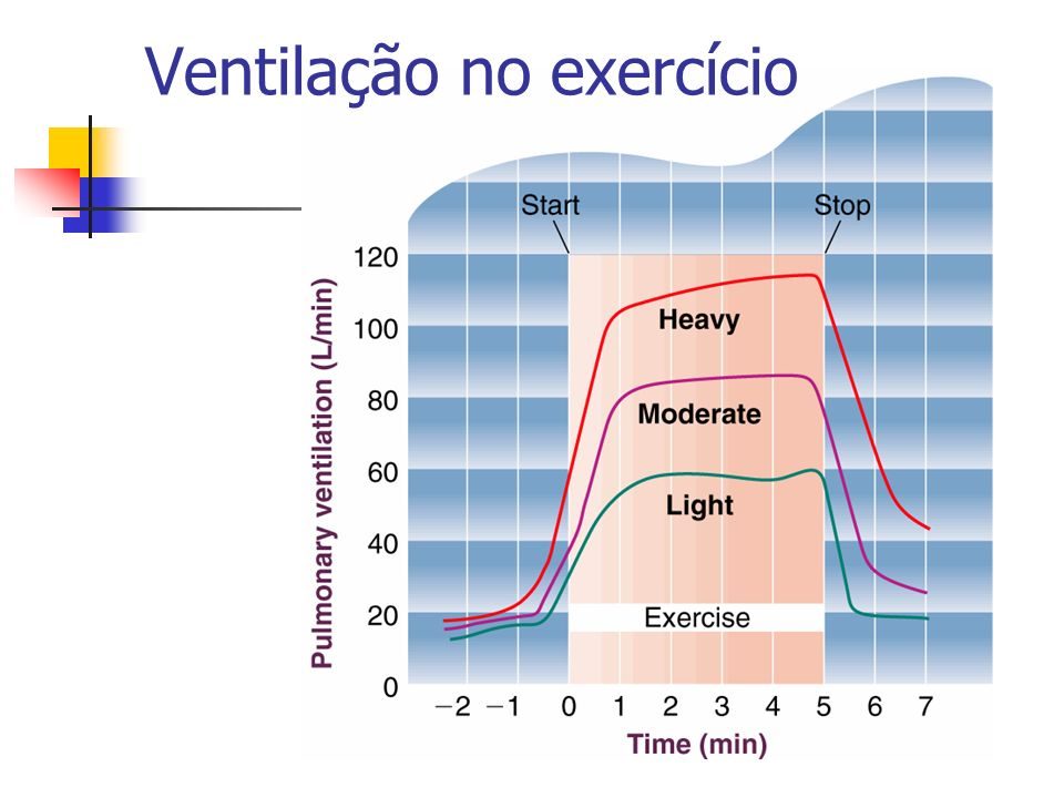 Ventilação no exercício