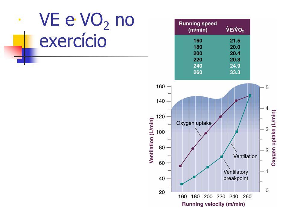 . VE e VO2 no exercício