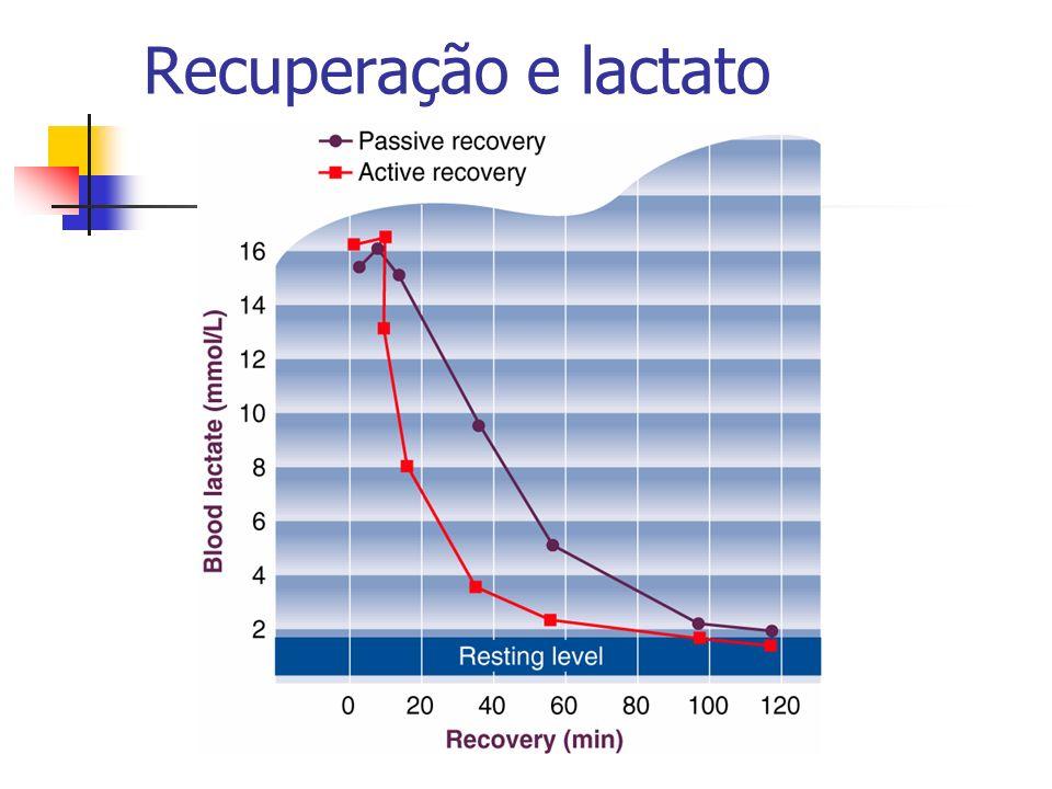 Recuperação e lactato
