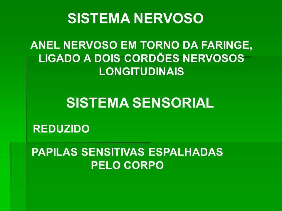 PAPILAS SENSITIVAS ESPALHADAS PELO CORPO