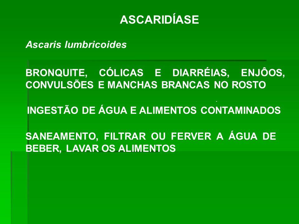 INGESTÃO DE ÁGUA E ALIMENTOS CONTAMINADOS