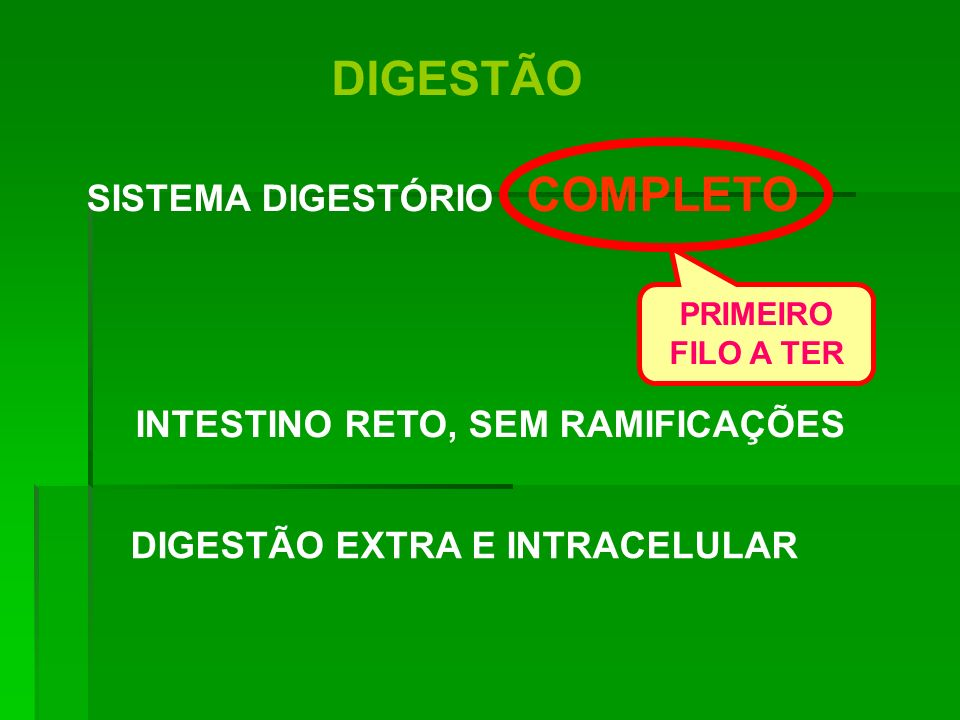 SISTEMA DIGESTÓRIO COMPLETO INTESTINO RETO, SEM RAMIFICAÇÕES