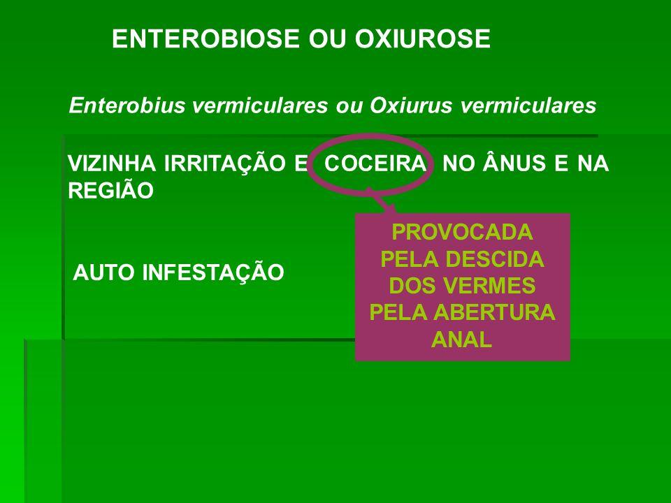 ENTEROBIOSE OU OXIUROSE