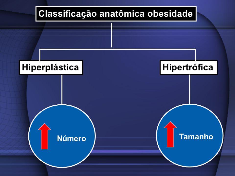 Classificação anatômica obesidade