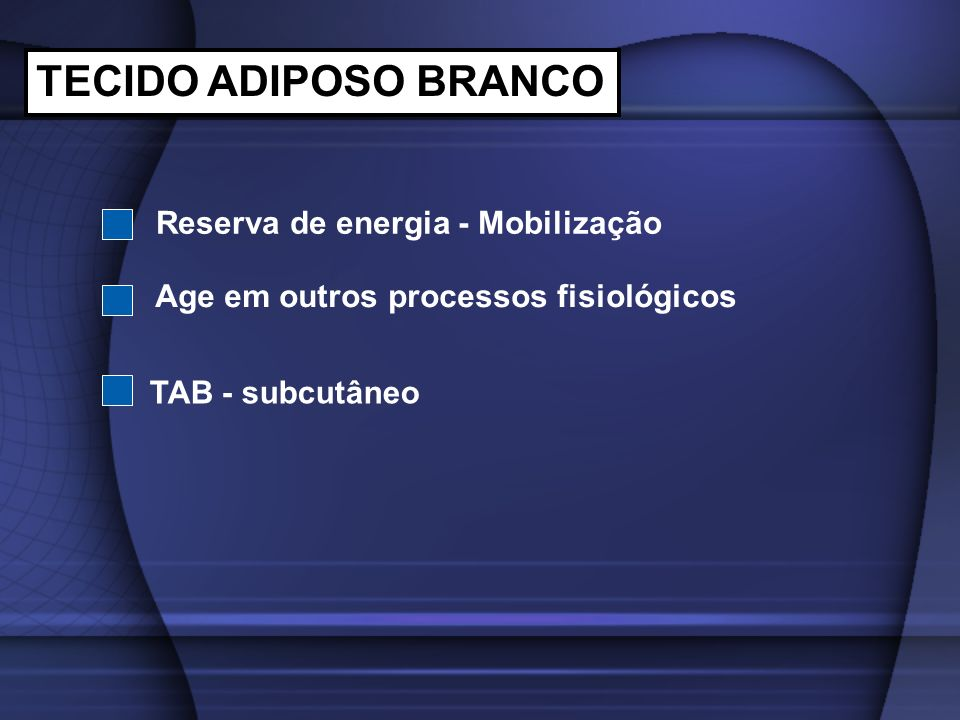 TECIDO ADIPOSO BRANCO Reserva de energia - Mobilização