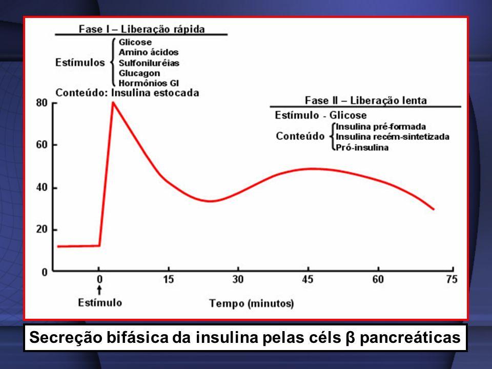 Secreção bifásica da insulina pelas céls β pancreáticas