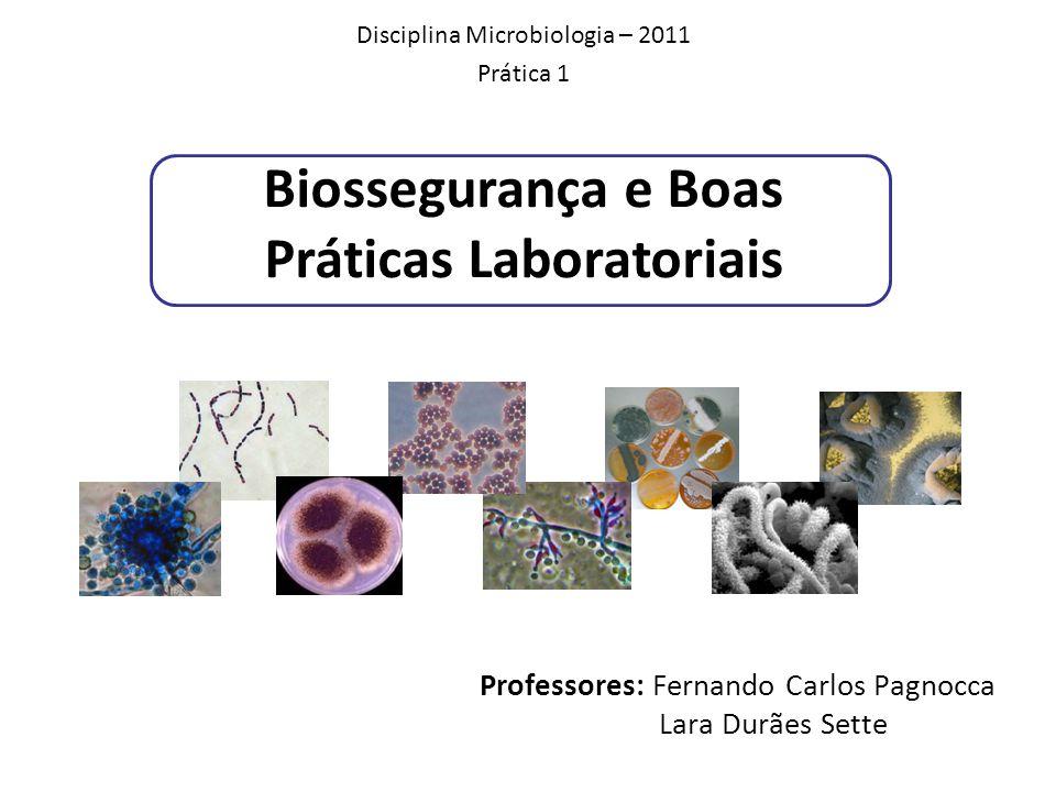 Professores: Fernando Carlos Pagnocca Lara Durães Sette