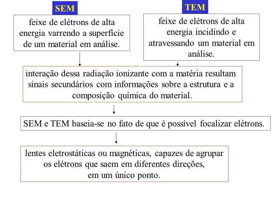 interação dessa radiação ionizante com a matéria resultam