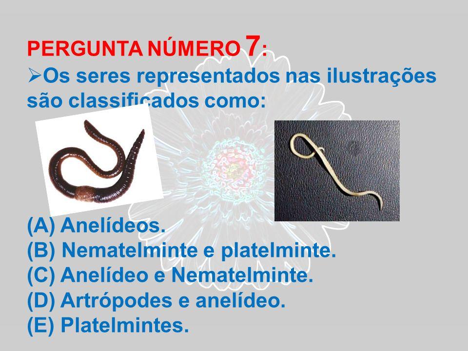 PERGUNTA NÚMERO 7: Os seres representados nas ilustrações são classificados como: Anelídeos. Nematelminte e platelminte.