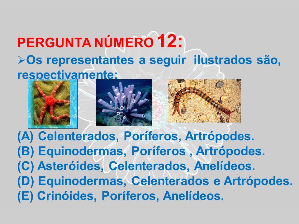 PERGUNTA NÚMERO 12: (A) Celenterados, Poríferos, Artrópodes.
