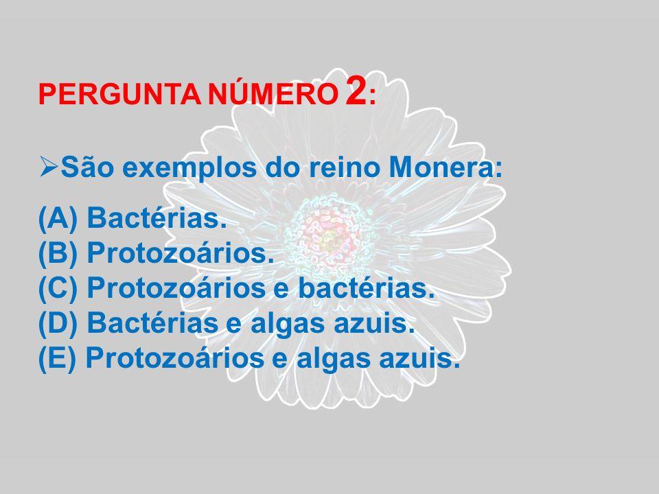 PERGUNTA NÚMERO 2: São exemplos do reino Monera: Bactérias. Protozoários. Protozoários e bactérias.