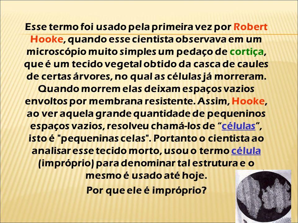 Esse termo foi usado pela primeira vez por Robert Hooke, quando esse cientista observava em um microscópio muito simples um pedaço de cortiça, que é um tecido vegetal obtido da casca de caules de certas árvores, no qual as células já morreram. Quando morrem elas deixam espaços vazios envoltos por membrana resistente. Assim, Hooke, ao ver aquela grande quantidade de pequeninos espaços vazios, resolveu chamá-los de células , isto é pequeninas celas . Portanto o cientista ao analisar esse tecido morto, usou o termo célula (impróprio) para denominar tal estrutura e o mesmo é usado até hoje.