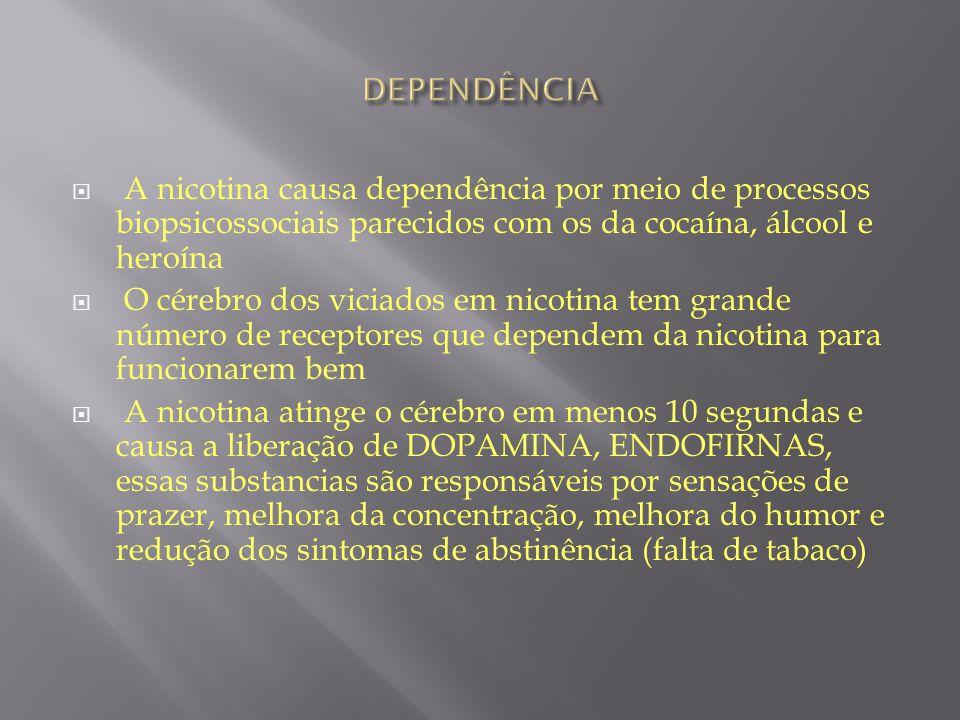 DEPENDÊNCIA A nicotina causa dependência por meio de processos biopsicossociais parecidos com os da cocaína, álcool e heroína.