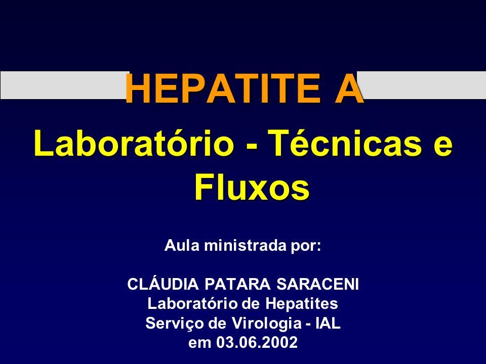HEPATITE A Laboratório - Técnicas e Fluxos Aula ministrada por: