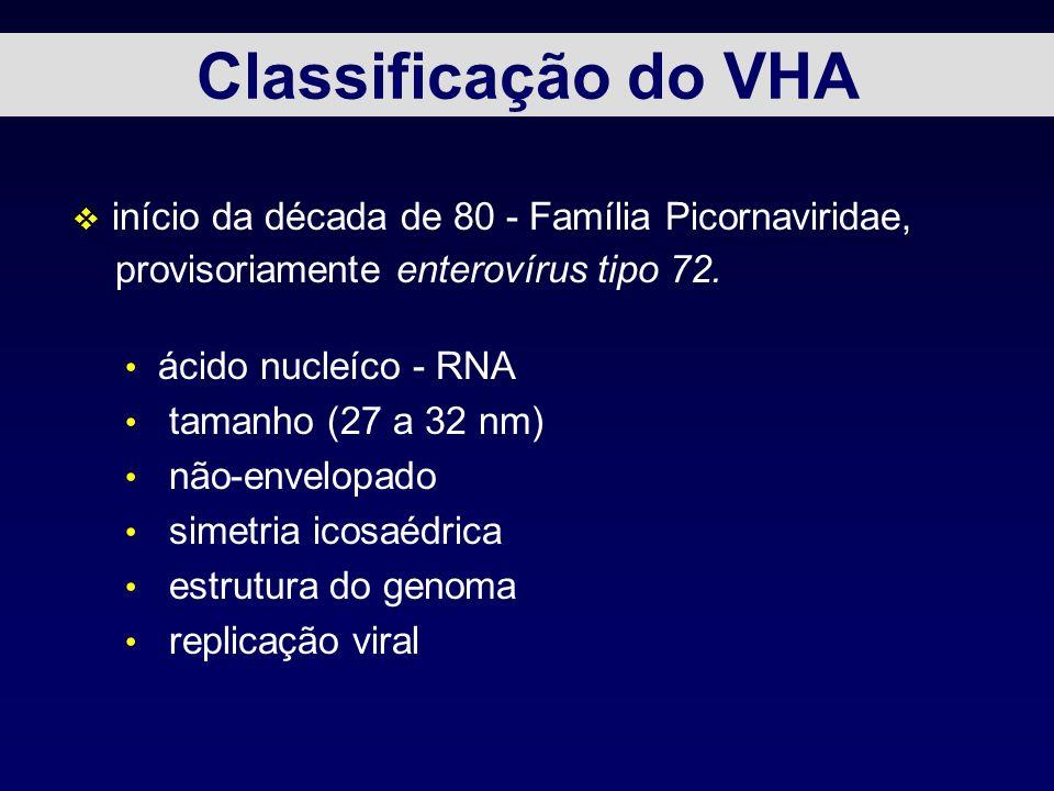 Classificação do VHA início da década de 80 - Família Picornaviridae,