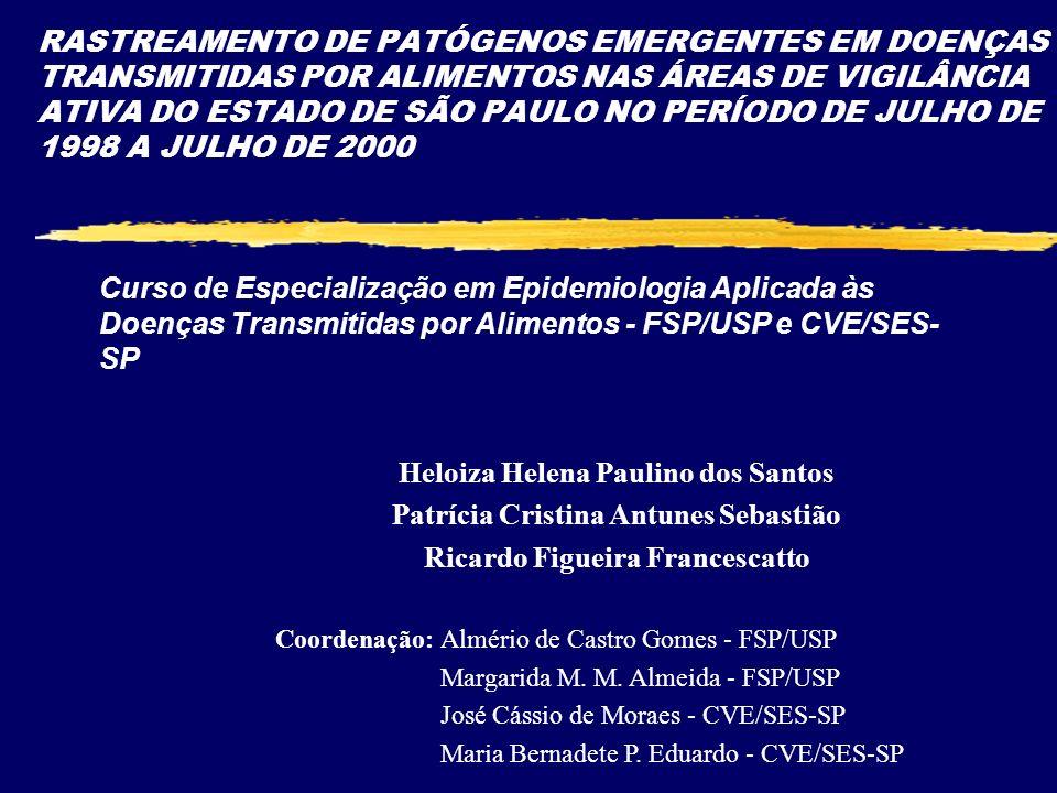 Heloiza Helena Paulino dos Santos Patrícia Cristina Antunes Sebastião