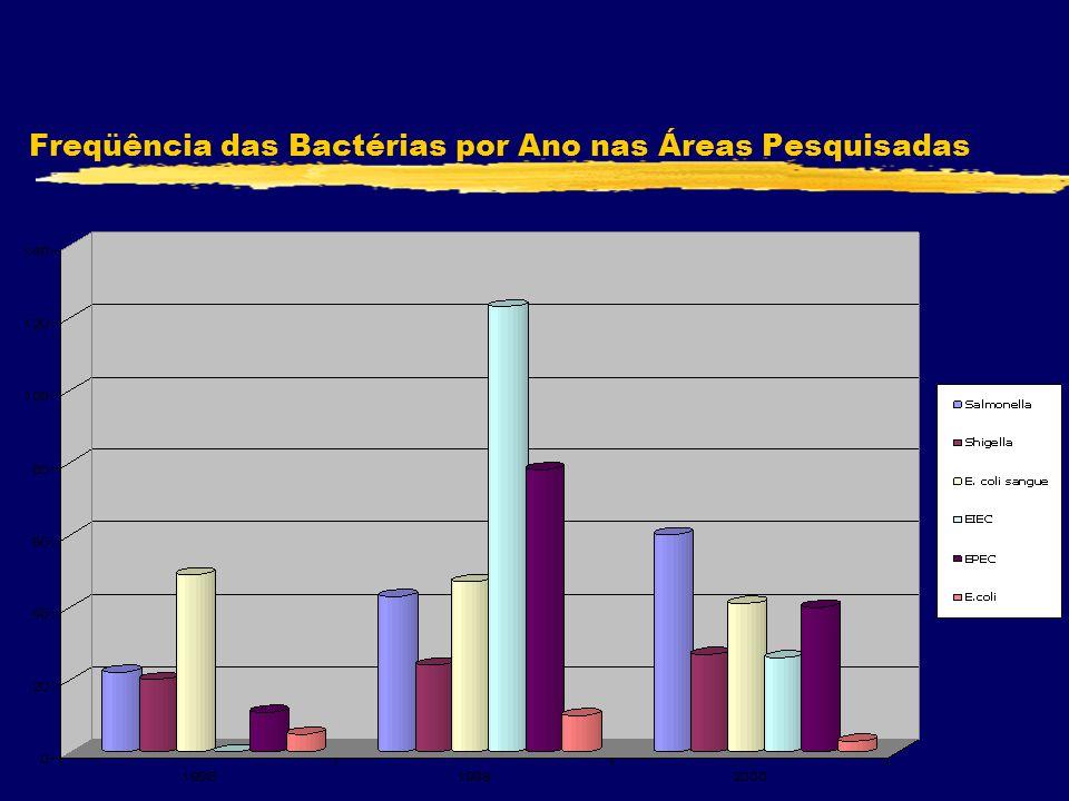 Freqüência das Bactérias por Ano nas Áreas Pesquisadas