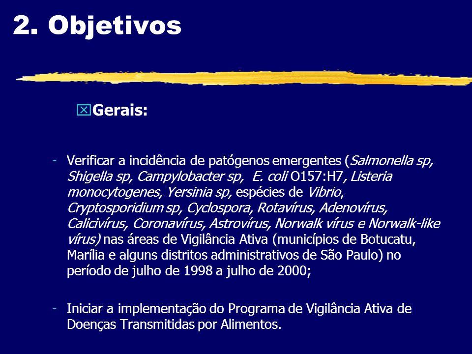 2. Objetivos Gerais: