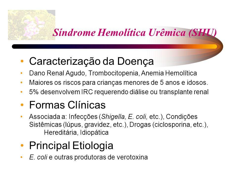 Síndrome Hemolítica Urêmica (SHU)