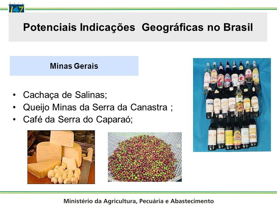 Potenciais Indicações Geográficas no Brasil
