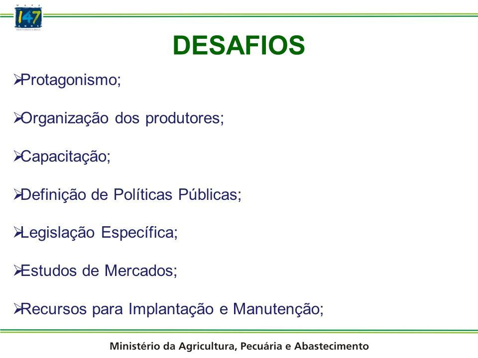 DESAFIOS Protagonismo; Organização dos produtores; Capacitação;