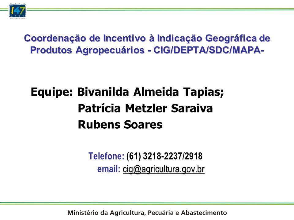 Equipe: Bivanilda Almeida Tapias; Patrícia Metzler Saraiva